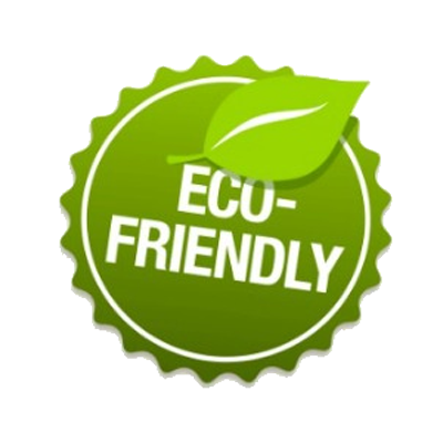Environment Friendly Fleet Service